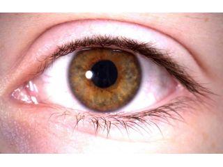 Podemos escanear nuestra retina para detectar enfermedades oculares con nuestro smartphone